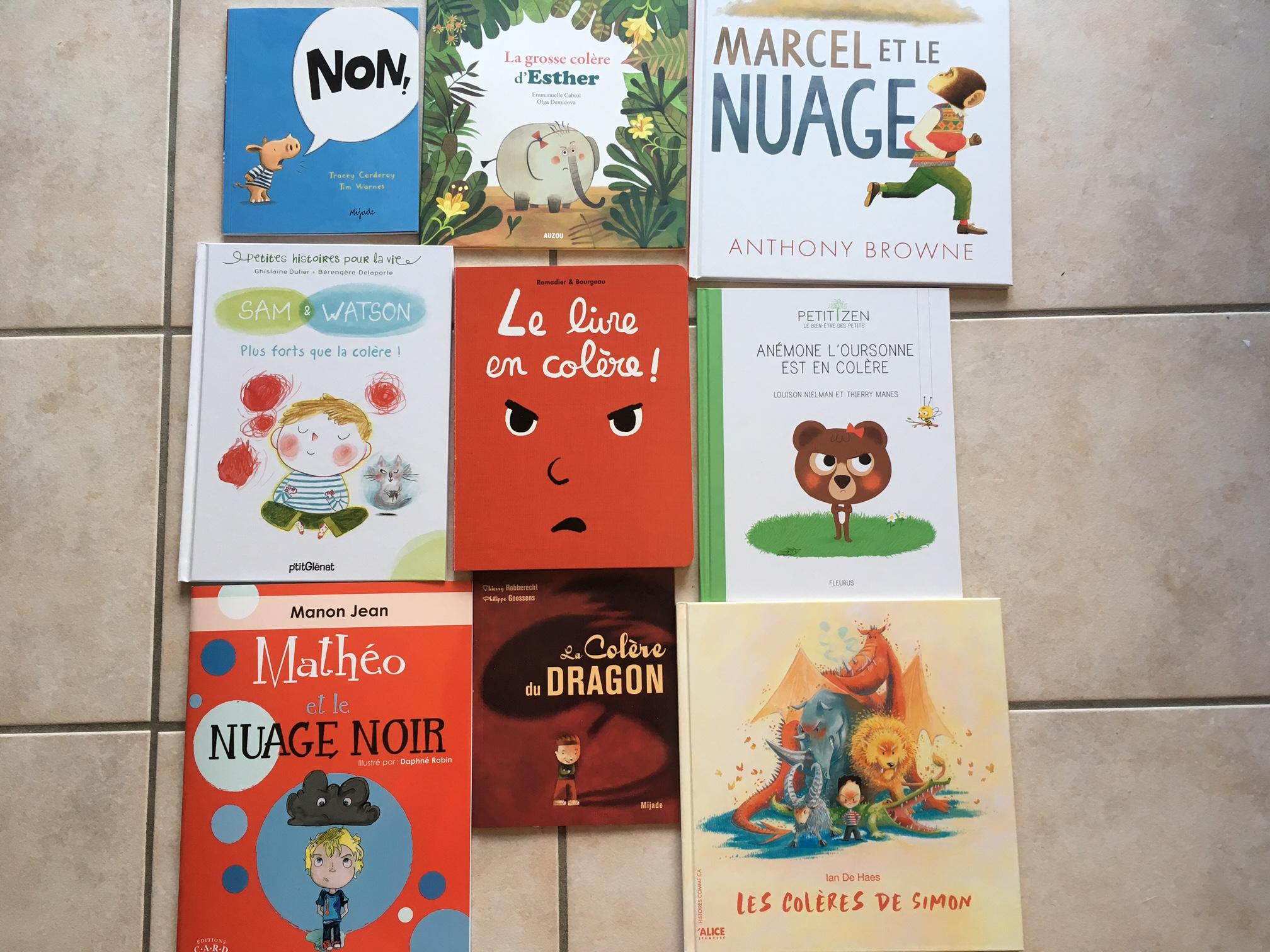 df15b8ac402b5 9 livres pour aider les enfants à exprimer leur colère sans violence