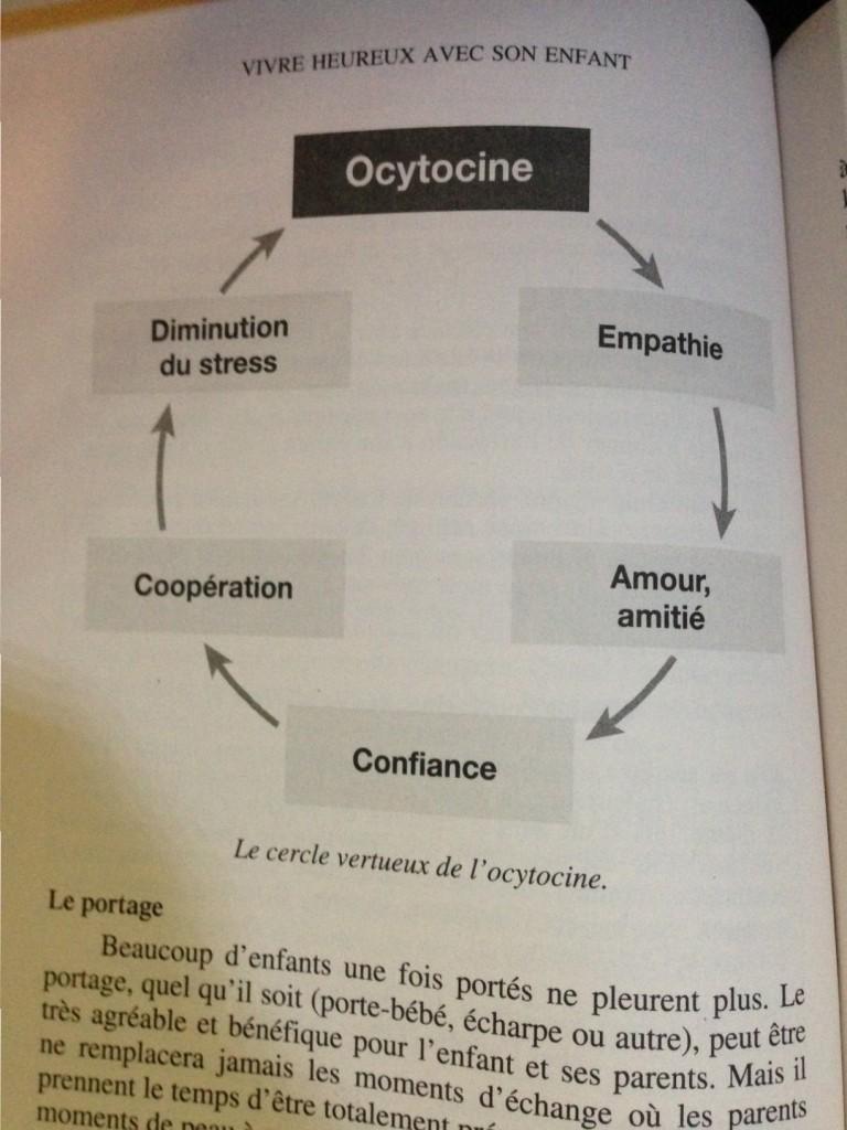 cercle-vertueux-de-locytocine-e1443983691892
