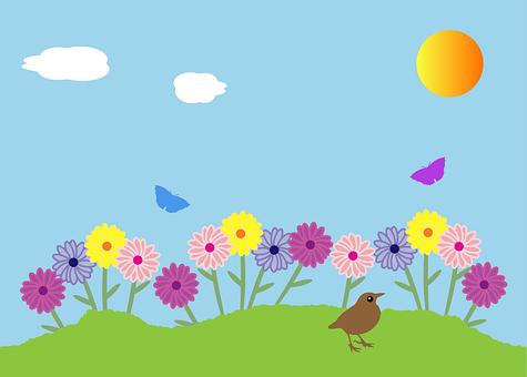 bird-1297040__340
