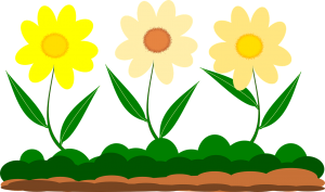 yellow-flower-1217452_1280