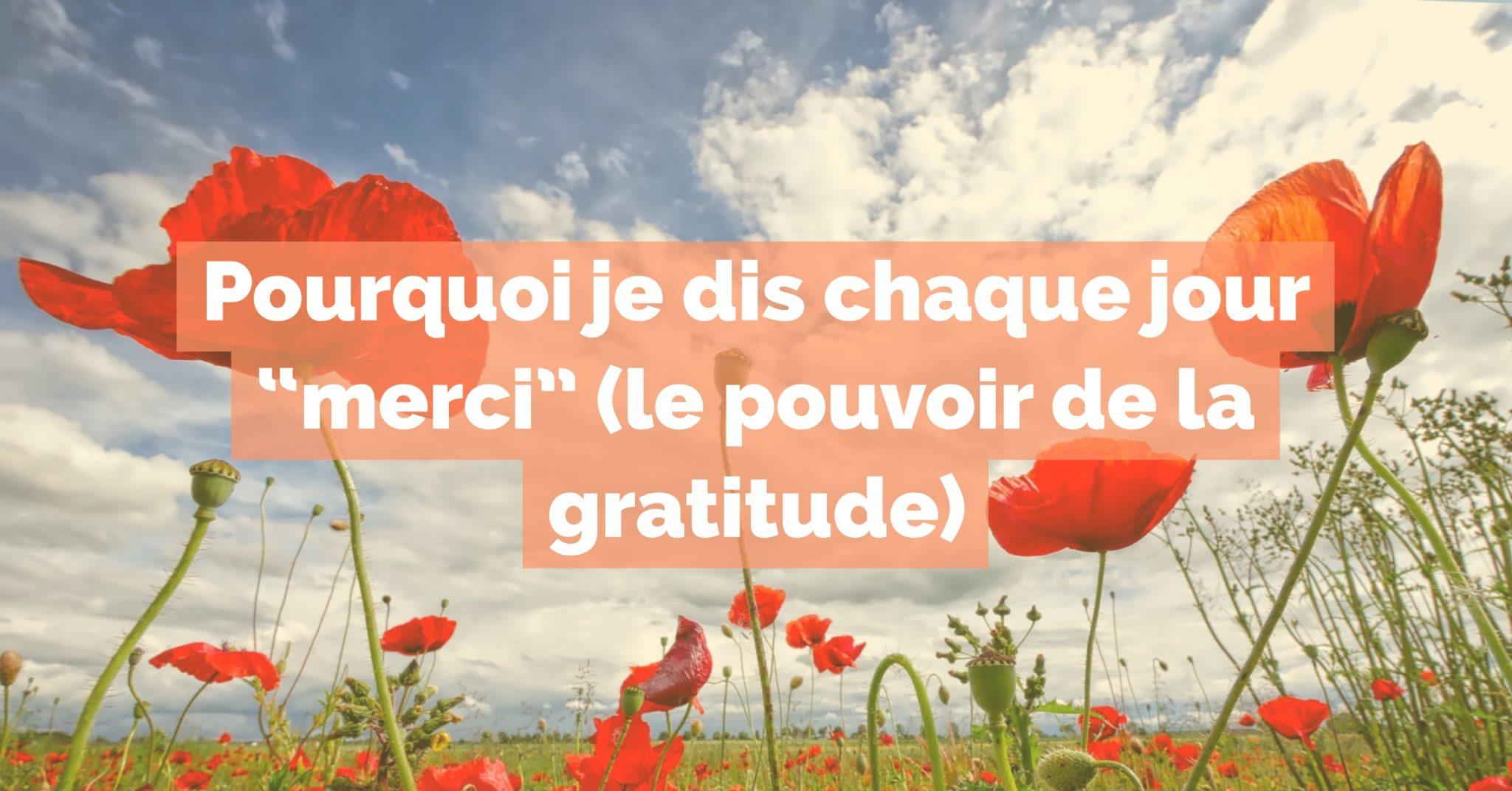 Pourquoi Je Dis Chaque Jour Merci Le Pouvoir De La Gratitude