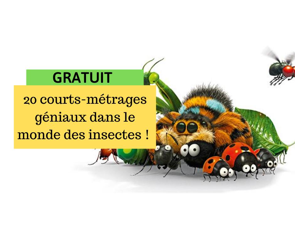 20 courts-métrages amusants dans dans le monde des insectes !